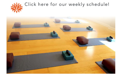 Click here for Yoga by the Sea classes with Casey Gash BFA E-RYT